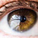 Lenzen blindheid